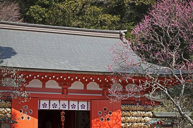 Kamakura1401_x660.jpg