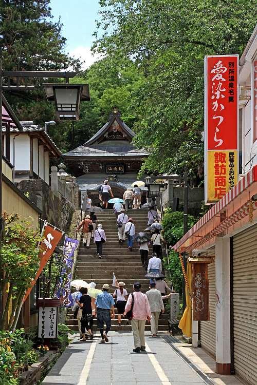 Shinshu1303_y8.jpg