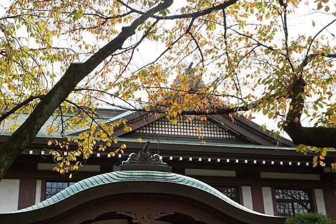 Yasukuni1405_x660.jpg