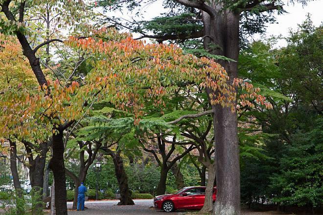 Yasukuni1422_x660.jpg