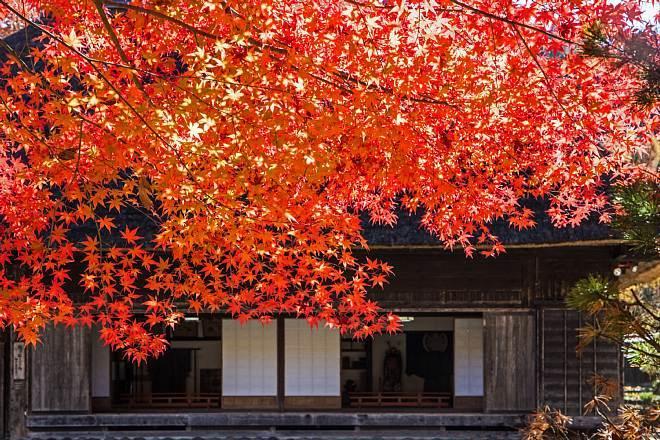 autumn1524_x660.jpg