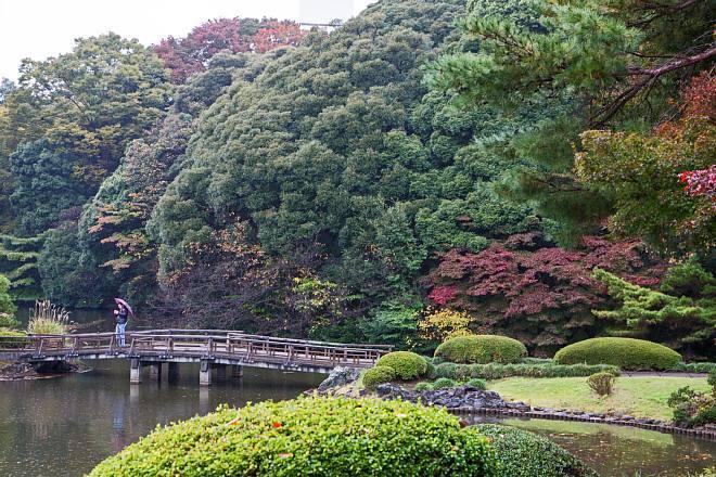 autumn15b27_x660.jpg