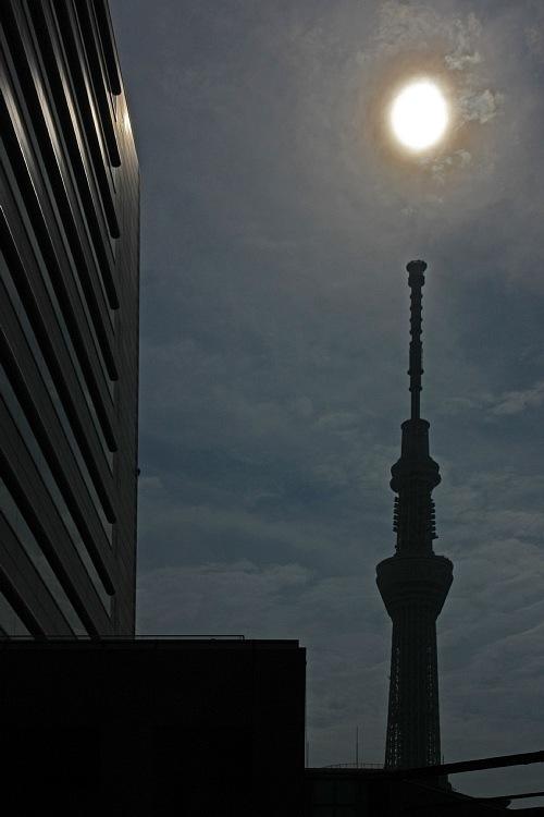 nisshoku1208_y750.jpg