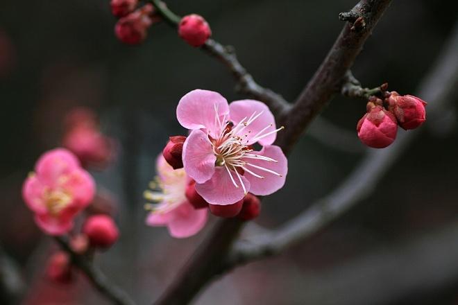 spring1208_x660.jpg