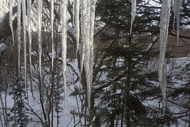 winter1402_x660.jpg
