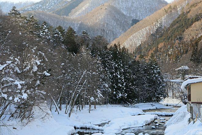 winter1411_x660.jpg