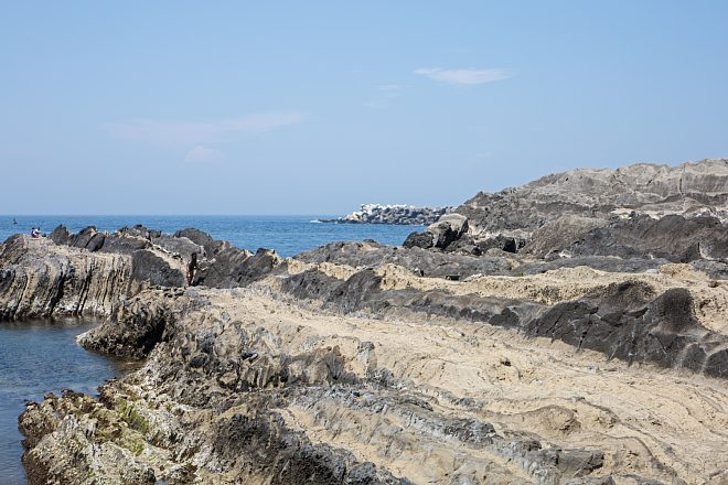 Jogashima1603_x660.jpg