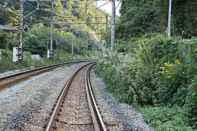 Kamakura08e001_x640.jpg