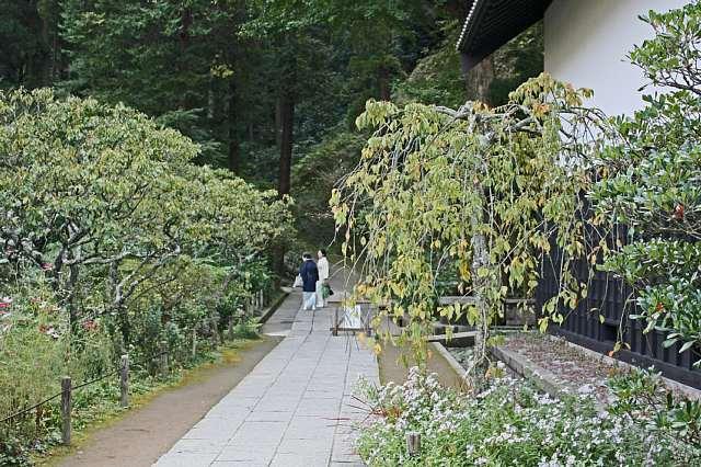 Kamakura08e27_x640.jpg