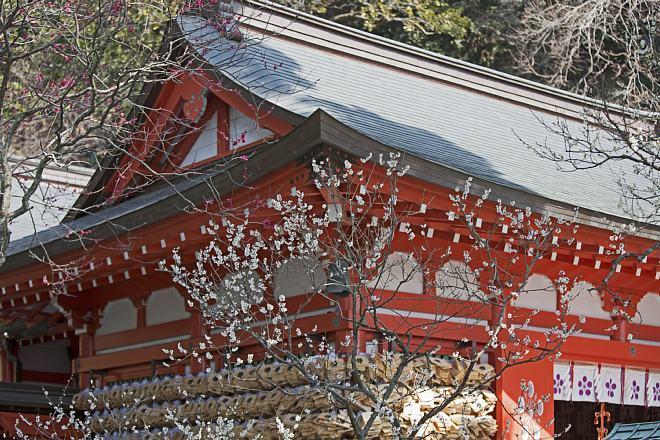 Kamakura1402_x660.jpg