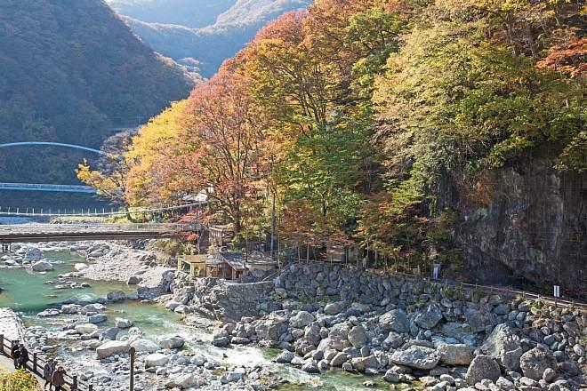 autumn1512_x660.jpg
