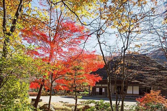 autumn1525_x660.jpg