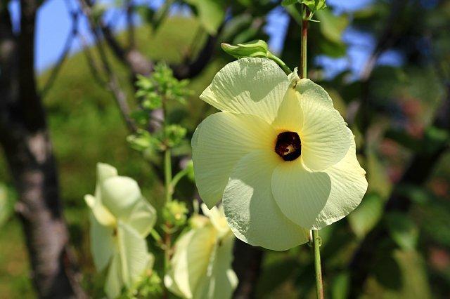 flowerpark1028_x640.jpg