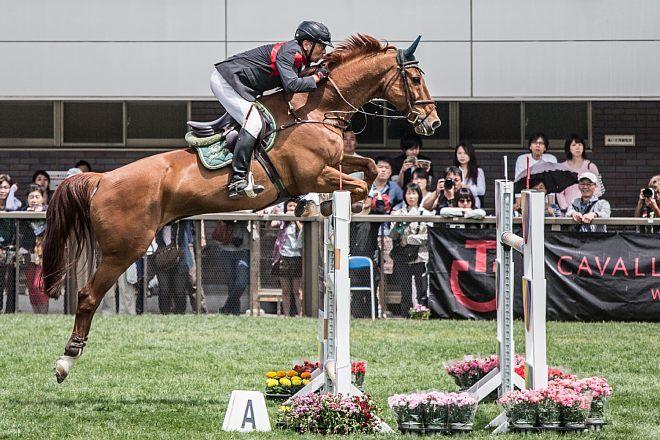 horse1508_x660.jpg