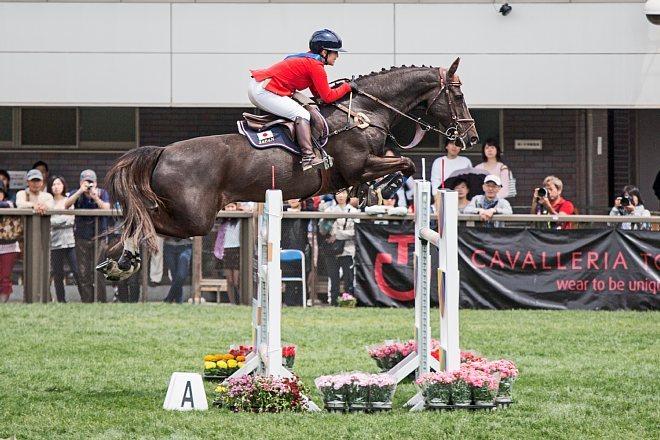 horse1516_x660.jpg