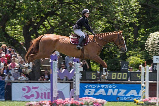 horse1526_x660.jpg
