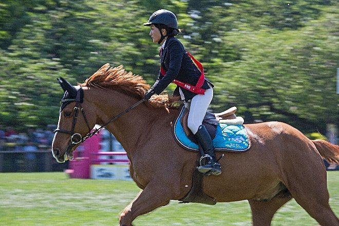 horse1545_x660.jpg