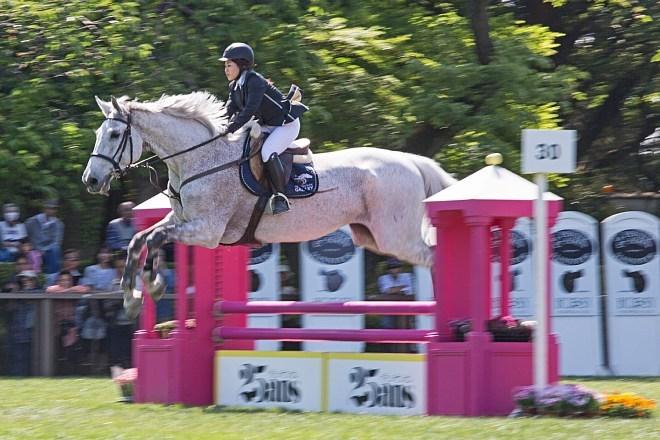 horse1547_x660.jpg