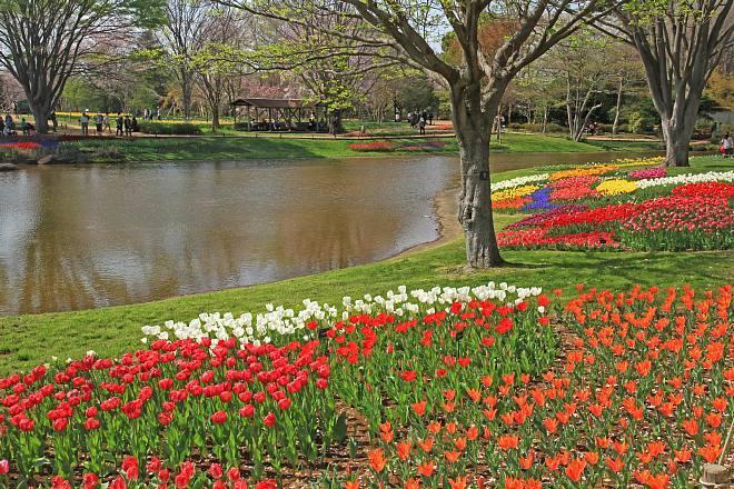 spring13b37_x660.jpg