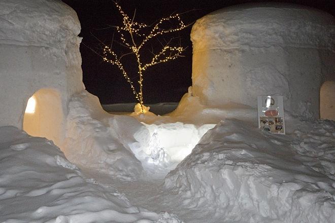winter1436_x660.jpg