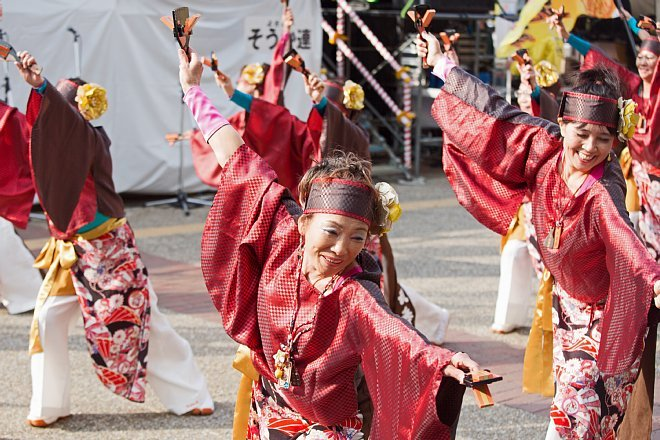 yosakoi1443_x660.jpg